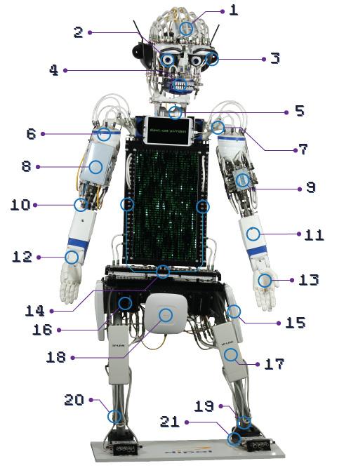 Śpiewający Robot DIPOLA